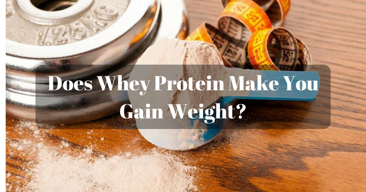 whey protein make you gain weight