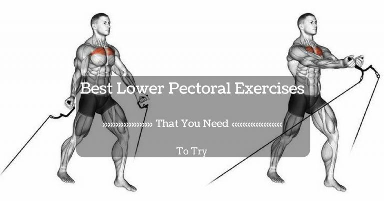 Best Lower Pectoral Exercises